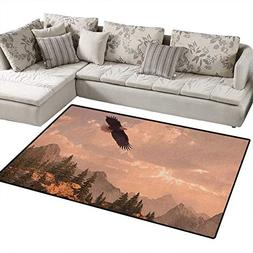 Eagle,Carpet,Nature Photography of Rocky Mountains and Fores