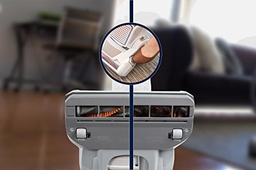Electrolux Vacuum, Grey and 21 Pound
